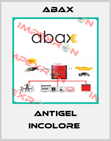 Abax-Antigel Incolore  price