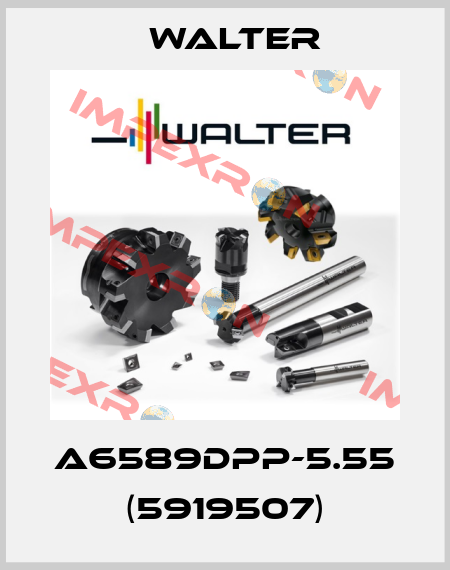 Walter-A6589DPP-5.55 (5919507) price