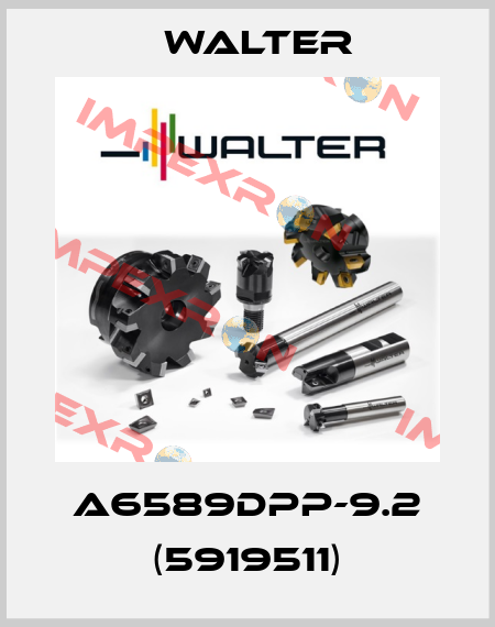 Walter-A6589DPP-9.2 (5919511) price