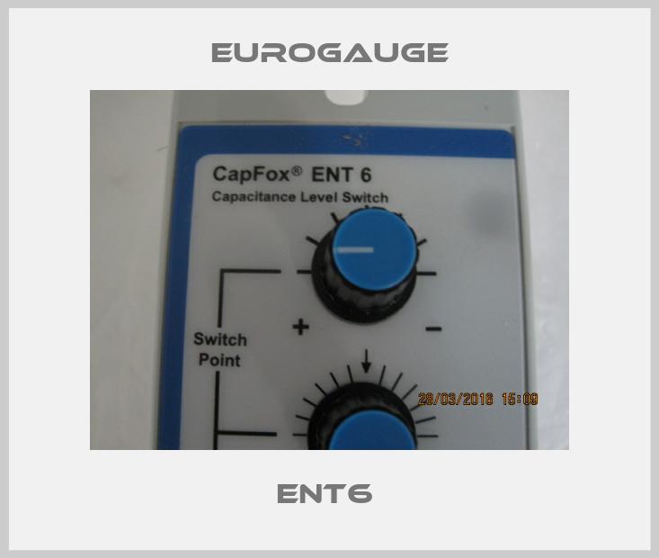 Eurogauge-ENT6  price